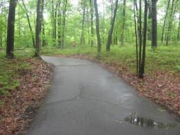 A misty trail at Huron County Nature Center Arboretum in late May 2012. Photo credit: kateschannel